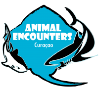 AnimalEncouters_logo-min